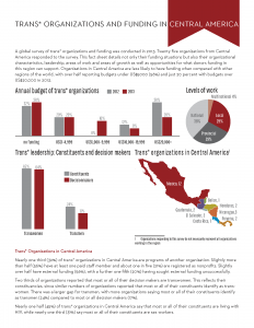 Fact Sheets from Transgender Funding: A Report from the Field in 2013