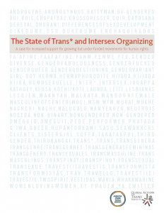 The State of Trans* and Intersex Organizing