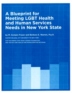 A Blueprint for Meeting LGBT Health and Human Service Needs in New York State