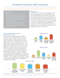Fact Sheets from the 2015 New York State LGBT Health and Human Services Needs Assessment